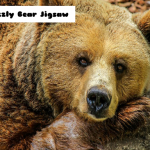Grizzly Bear Jigsaw