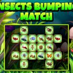 Insects Bumping Match